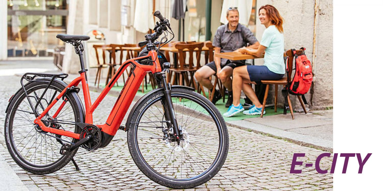 E-City E-Bike ekone Flyer