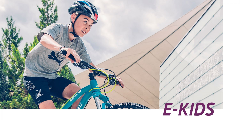 E-Kids E-Bike ekone Haibike Hardseven 1.0
