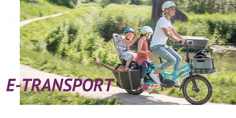 E-Transport E-Bike ekone Tern GSD