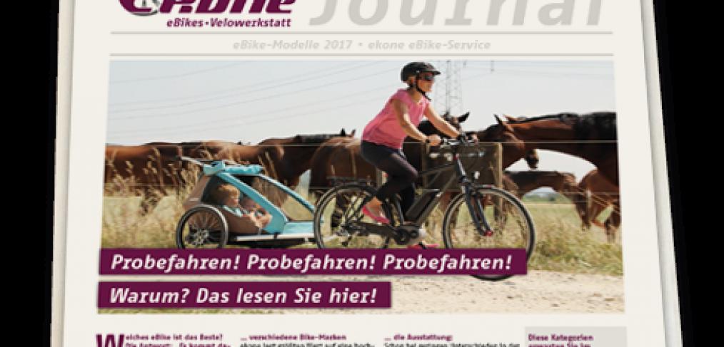 ekone Journal 2017