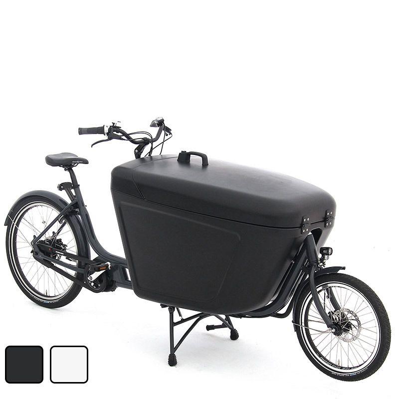 Babboe Pro Bike 2020