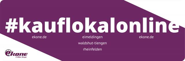 kauf-lokal-online ekone e-bike shops